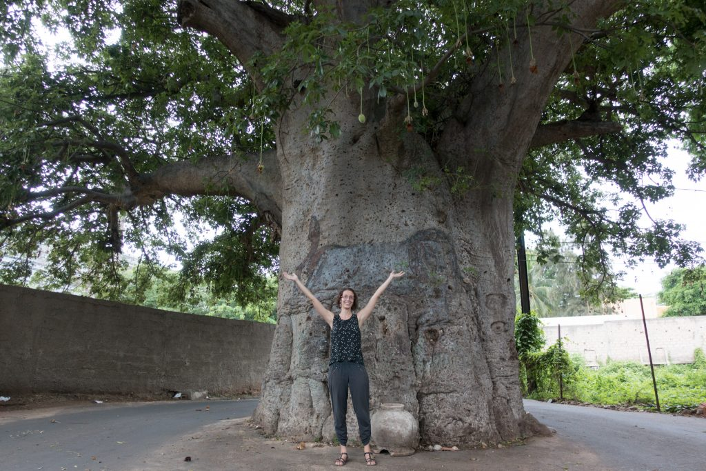 Hélène in front of a giant baobab in Dakar.