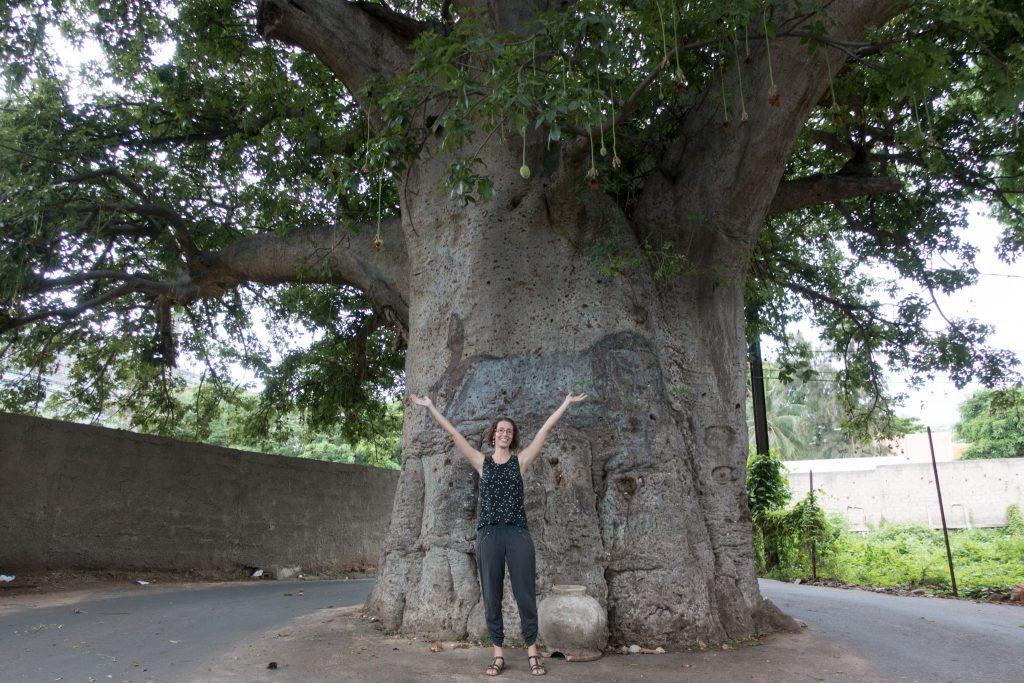 Hélène in front of a giant baobab in Dakar.